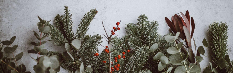Tannenzweige Weihnachten