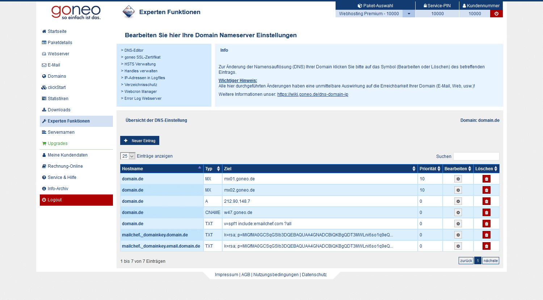 DNS Einstellungen Übersicht goneo an Beispiel-Domain